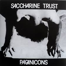 SACCHARINE TRUST – PAGANICONS LP (RE-ISSUE)
