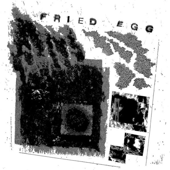 FRIED EGG – SQUARE ONE LP